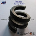 Fe6 Double coil Spring Washer 5