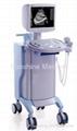 Digital B ultrasound 2000E+ CE marked