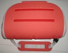 EVA Cooler Bag
