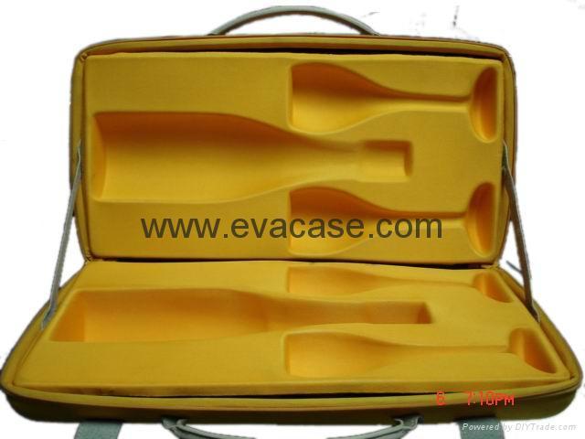 EVA case 1