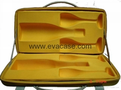 EVA case