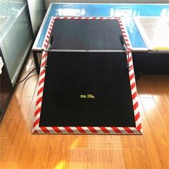 低地板客车电动动翻转式轮椅升降导板装置