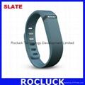 Fitbit Flex Smart bracelet (Slate) for