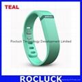 Fitbit Flex Smart bracelet (Teal) for