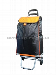 Trolley Bag