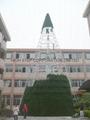 大型户外圣诞树 9