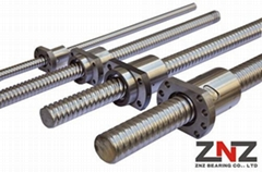 ZNZ Precision Rolled Ball Screw SFE