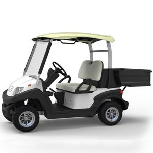 CE Certificate for EU with   multifunctional golf car
