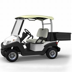 CE Certificate for EU with   multifunctional golf car (Hot Product - 1*)