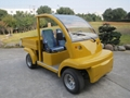 CE Approved Electric Utility Car with Cargo Box