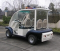 CE Approved Electric Passenger Car for Cruise