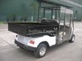 electric utility car with closed cabin