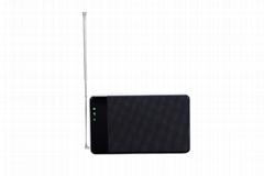 Lesee V2 DVB-T T2 Wi-Fi移動電視盒子