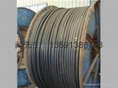 生產yjcv電纜 銅包鋁電纜 工廠