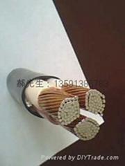 銅包鋁電纜 yjcv電纜 廠家 生產廠家