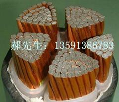YJCV電纜 銅包鋁電纜 生產廠家