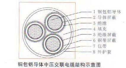 铜包铝YJCV电缆 生产厂家 yjvc电缆 3