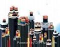 铜包铝YJCV电缆 生产厂家 yjvc电缆 4