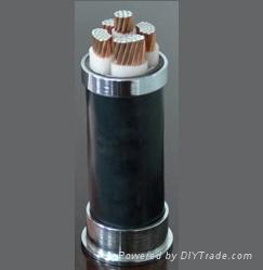 铜包铝电缆生产厂家 铜包铝电缆 YJVC电缆 4