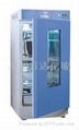 生化培养箱 光照箱干燥箱 电热