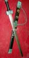 Qin Sword