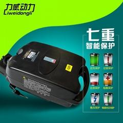 36V10AH小青蛙锂电池