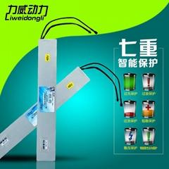 广州力威 36v 10AH 内胆休闲车锂电池