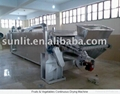 Fruits & Vegetables Continuous Drying Machine