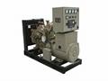 康明斯系列柴油发电机组 3