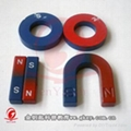 magnetic education and education magnets