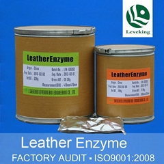 Lipase Degreasing Enzymes for Leather and Fur Proccessing
