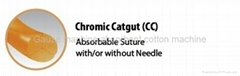 Absorbable suture-Chromic catgut