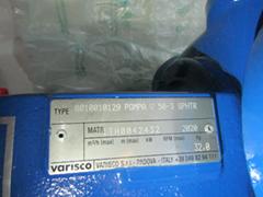 VARISCO齿轮泵