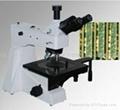 微分干涉DIC显微镜