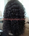 100% human hair lace wigs 2
