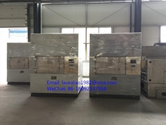 Industrial Belt Type Microwave Puffing Equipment for Fruit