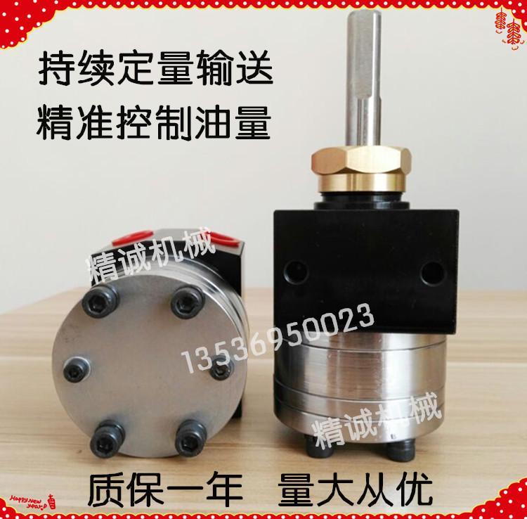 静电喷漆齿轮泵 2