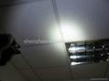 Trustfire Mini-01 Stainless Steel CREE XM-L T6 3-Mode 280-Lumen LED Keychain 5