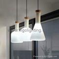 PENDANT LAMP V625