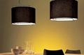 pendnt lamp A105 2