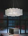 Glass pendant lamp B602