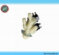 Washing Machine Water Valve for LG, AP4444447, PS3527433,5220FR2075C