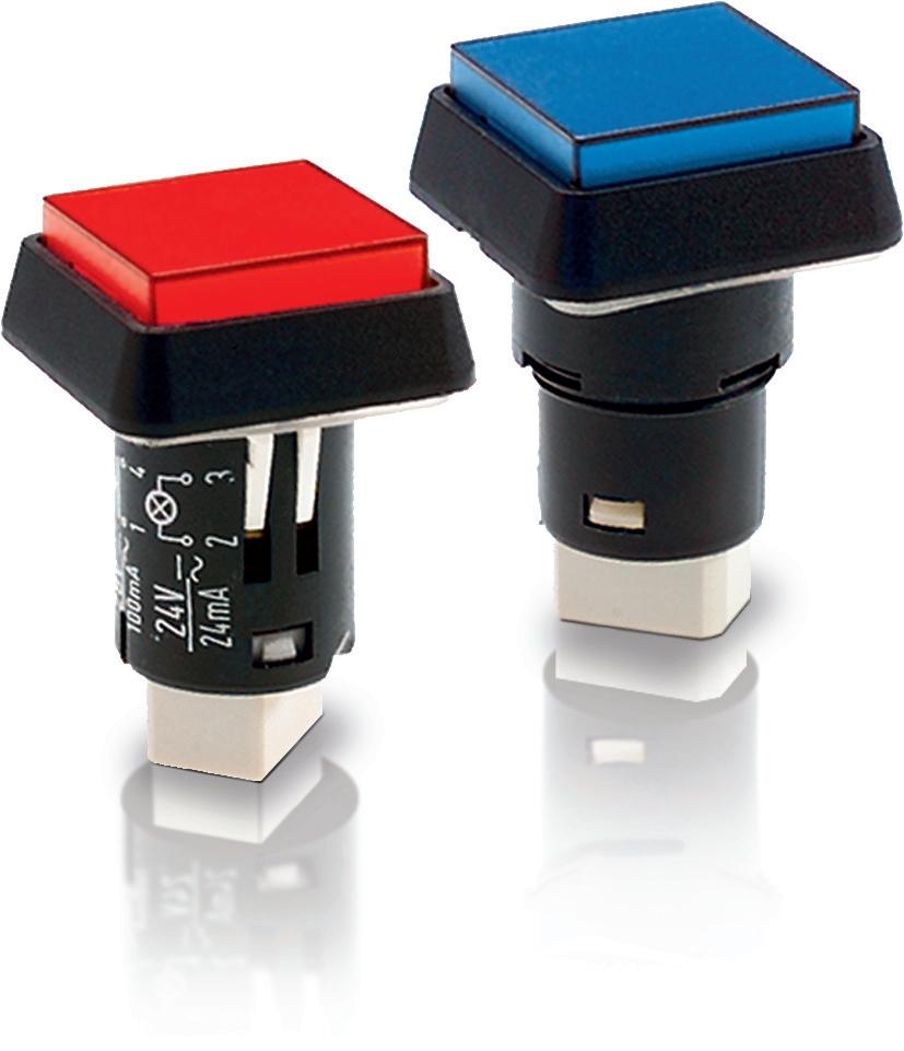 RAFI LUMOTAST 25 - SIGNAL LAMPS 指示燈 1