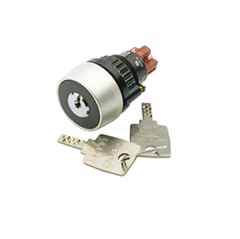 eao Keylock switch 14-135.025K2