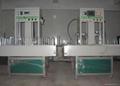 自動噴漆機械設備 2
