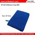 Cleaning Drying mitt