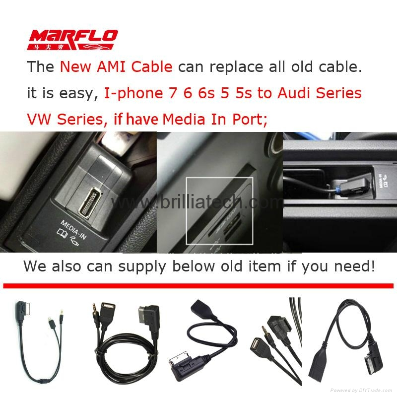 AMI Cable