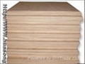 SUPPLY PLYWOOD(USE PACKING OR TRAY)