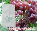 葡萄專用套袋