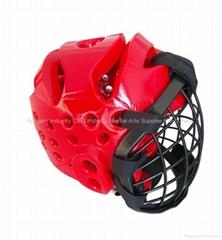 Head guard with net shield